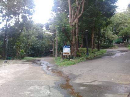 mambukal road.jpg